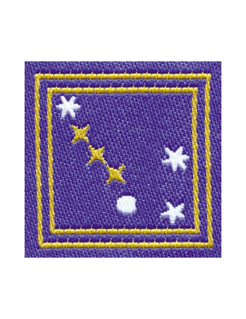 Distintivo Astronomo E/G Agesci