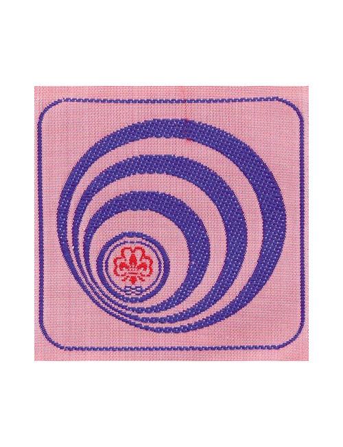 Distintivo Brevetto Animazione internazionale E/G Agesci