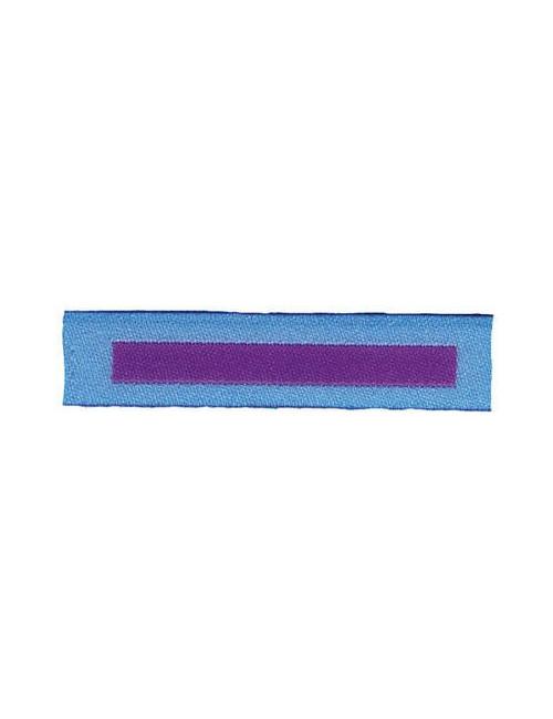 Distintivo Barretta Capo Gruppo-Quadro Agesci